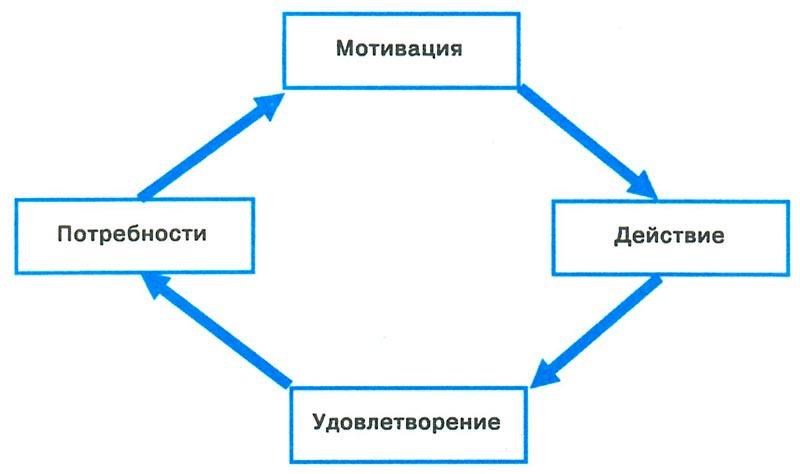 Схемы система мотивации